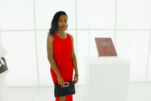 Louis Vuitton Accessories Gallery